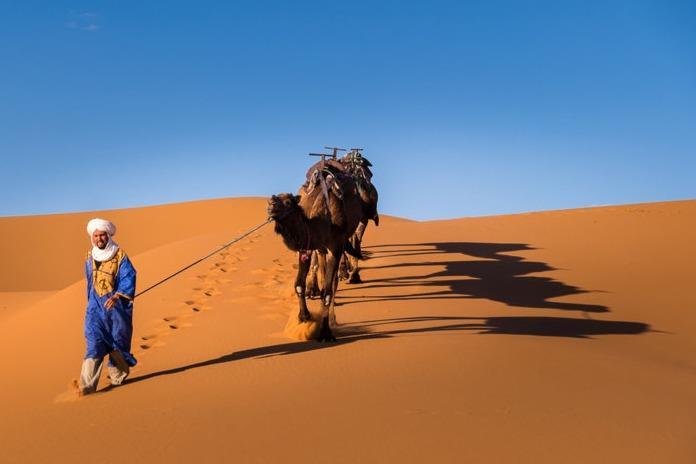 تور مراکش.amordadtour.com