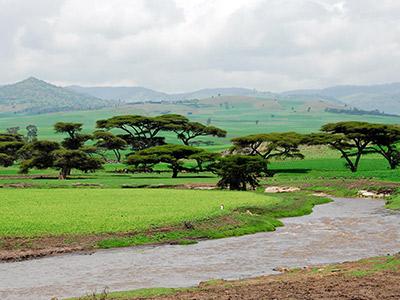 تور اتیوپی تور اتیوپی تابستان 99