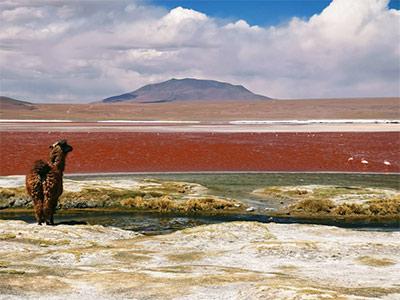 تور بولیوی تور بولیوی نوروز 1401