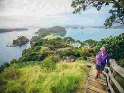 تور نیوزیلند.amordadtour.com