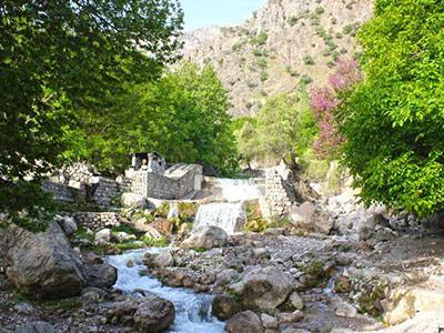 تور آبشار شیوند و دشت سوسن.amordadtour.com