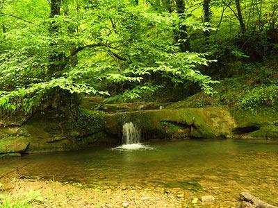 تور آبشار ترز.amordadtour.com